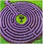 ex87_labyrinth